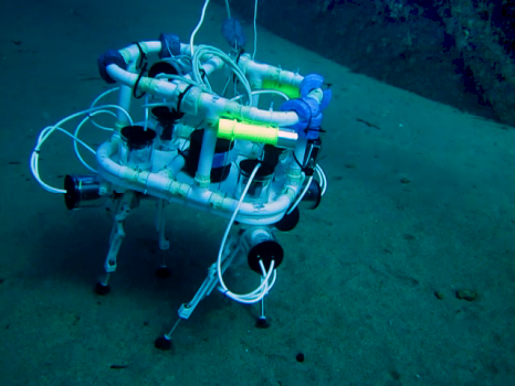 Image SILVER (Seabed-Interaction Legged Vehicle for Exploration and Research)