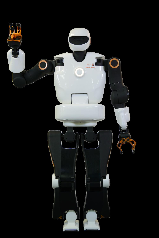Image PAL Robotics Pyrène