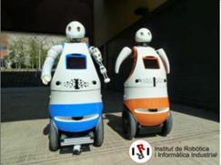 Image Tibi and Dabo robots
